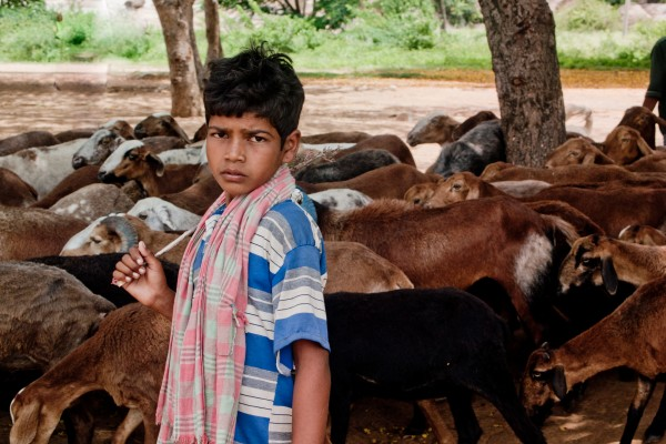 child labour should be banned in india Child bonded labour in india is mostly in the agricultural sector but has in recent times been moving into other sectors as well such as beedi-rolling.
