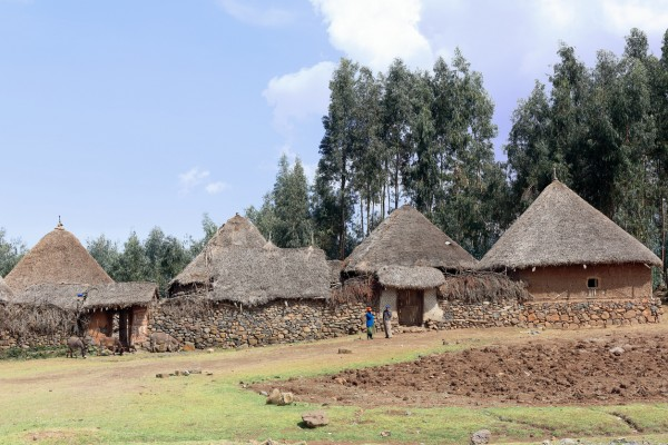 Oromia, Ethiopia-March 31, 2013: Donkeys and a couple of women stand before the stone and scrub walls and thatched roofs of the huts of a small walled hamlet of the Oromo people alongside the Debre Sina-Addis Ababa route while watching at the tourists visiting the place.